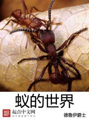 蚁的世界最新章节列表,蚁的世界全文阅读